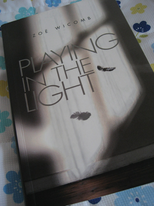Zoe Wicomb: Playing in the light