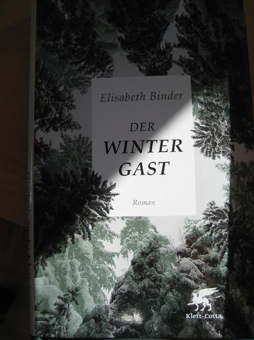 Elisabeth Binder: Der Wintergast